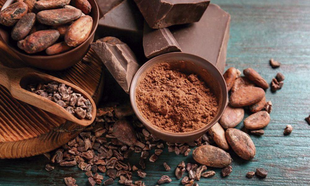 FESTIVAL-CAFE-CHOCOLATE-CONDESA-CDMX-ECOS-DE-ARAGON1